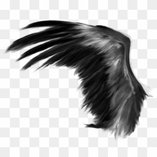 Free Black Wings Png Png Transparent Images Pikpng