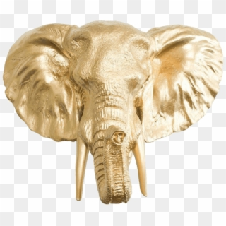 Free Elephant Head Png Png Transparent Images Pikpng Use these free elephant head png images #4134 for your personal projects or. pikpng