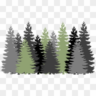 Pine Tree Forest Png Forest Trees Transparent Background Clipart 38494 Pikpng All forest png images are displayed below available in 100% png transparent white background for free browse and download free forest png transparent images transparent background image. pine tree forest png forest trees