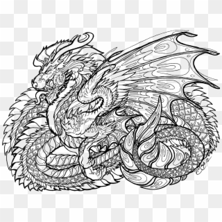 Dragon Coloring Pages For Adults Dragon Coloring Pages Adults At ... | 320x320