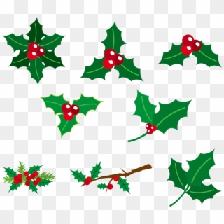 Free Christmas Berries Png Png Transparent Images Pikpng