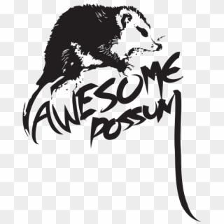 Download Possum Clipart Vector - Phalangeriformes PNG Image with No  Background - PNGkey.com